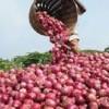 মিয়ানমার থেকে ৫ হাজার মে.টন পেঁয়াজ আমদানি করতে চুক্তিবদ্ধ হয়েছেন স্থানীয় ব্যবসায়ীরা